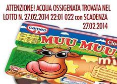 Ritirate 30.000 confezioni di Budino Cameo Mumu: c'era acqua ossigenata. Attenzione al lotto n. 27.02.2014