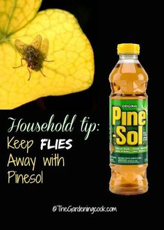 Wipe everything down with Pine-Sol to keep flies away. | 37 RV Hacks That Will Make You A Happy Camper