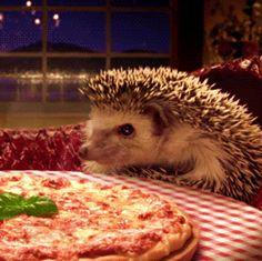 Nom nom~I love my pizza ♡