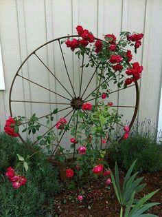 Wagon Wheel as Trellis / Garden Art Wagon Wheel als Spalier- / Gartenkunst von OSU Master Gardener, Diy Trellis, Trellis Design, Garden Trellis, Trellis Ideas, Rose Trellis, Clematis Trellis, Climbing Plants For Trellis, Garden Planters, Porch Trellis
