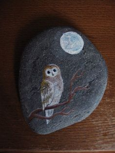 You should try this, Chloe :) Owl on a stone