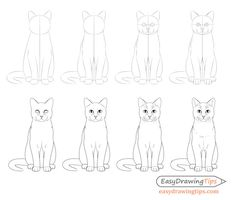 Sitting cat front view drawing step by step Easy Drawings Sketches, Easy Drawings For Kids, Animal Sketches, Animal Drawings, Drawing Animals, Eye Drawings, Simple Cat Drawing, Easy Drawing Steps, Step By Step Drawing