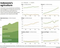Indonesia's agriculture – graphic of the day Indonesia's two presidential candidates have pledged to increase the amount of farm land to boost self sufficiency. The country's agro-food imports have more than quadrupled in a decade to about $18.4 billion in 2013.
