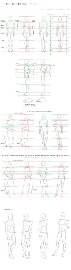 full body tutorial by nominee84 on DeviantArt
