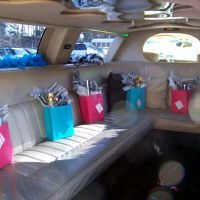 Teen Limo party have red carpet and dress pretty and one with shades:)