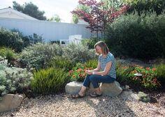 Rebates help spur drought-tolerant yards in O.C. – Orange County ...