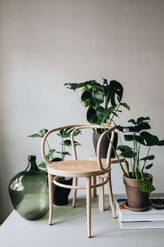 Die Botanical Post No. Decor, Furniture, Interior Inspiration, Home Design Decor, Interior Styling, Interior Furniture, Interior And Exterior, Home Decor, Furniture Decor