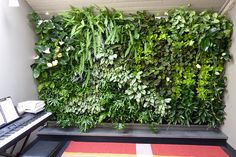 "Create ""living walls"" with Florafelt ready-made vertical planters."
