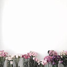 저는 따로 보정을 하지 않아요 레슨실이 온통 화이트라 사진 찍기 최고의 조건이구요! 거기에 채광까지 있으면 더 최고랍니다! 그럼 전 이만 .. . . . . #블루밍스완 #플라워레슨 #꽃스타그램 #꽃 #일상 #bloomingswan #florist #flowers