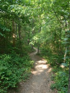 5 Mile trail Race in the Morning! Can't wait! I am hoping my view is like this for the run!