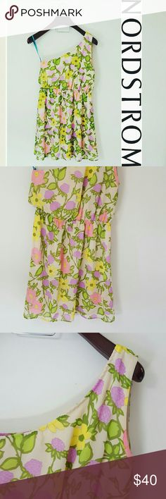 Nordstrom   Everly floral print one shoulder dress In excellent condition! Gorgeous Everly floral print one-shoulder dress. Size large. Light weight material, gorgeous colors! Blue string shown in first picture is just to hold up the dress.   This is gorgeous with a bright statement necklace! Elastic band inside the dress around the waist.  Bundle up! Offers always welcome:) Nordstrom Dresses