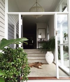 THE GRAND ENTRANCE   of @alannasmitdesigns beautiful weatherboard home in #Newport ✨ Grand Entrance, Newport, Building A House, Beach House, Exterior, Outdoor Decor, Beautiful, Instagram, Outdoors
