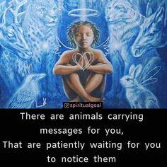 Spiritual Health, Spiritual Wisdom, Spiritual Awakening, Animal Spirit Guides, Spirit Animal, Animal Symbolism, Soul Connection, Spirit Science, Animal Totems