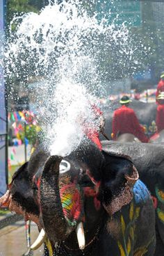 Songkran (thai new year), Thailand