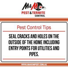 Termite Inspections Pest Control Inspections Ventilation