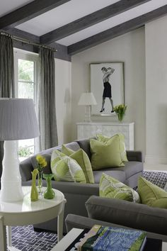 Sitting Area Lime Green Accent Pillows Interiordesign Transitional Decor Living Room