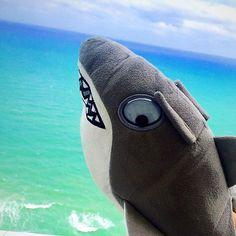 Selfies, Flip Flops, Baseball Hats, Slippers, Take That, Vacation, Baseball Caps, Vacations, Beach Sandals