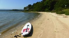 Brands Bay SUP (Poole Harbour)