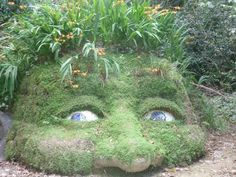 This was taken at the Lost gardens of Heligan, Cornwall