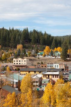 Fall Color Photography in the Tahoe and Truckee Area. Color Photography, Landscape Photography, Truckee California, Northern California, Yosemite National Park, National Parks, Truckee River, Fall Vacations, Reno Tahoe