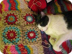 #crochet #ripple #squares #calico #cat
