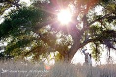 valencia california