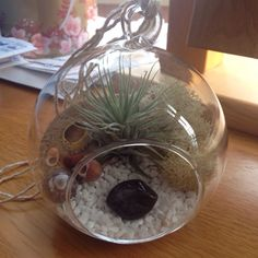 Gorgeous globe terrarium created by Ms L.C. in London, featuring the birthstone (garnet) of the person she was gifting it to. Brilliant idea!