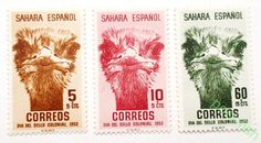 ИСПАНСКАЯ САХАРА КОЛОНИИ ИСПАНИЯ 1952 год Mi# 129-131 СТРАУСЫ ПТИЦЫ ФАУНА **