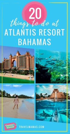 20 Things to do at Atlantis Resort Bahamas with Kids. If Atlantis is on your bucket list or you're planning a return visit, you'll love this list of the top 20 things to do at Atlantis Paradise Island Resort. Family Vacation Packages, Family Vacation Destinations, Vacation Trips, Travel Destinations, Vacation Ideas, Travel Tips, Family Vacations, Dream Vacations, Beach Vacations