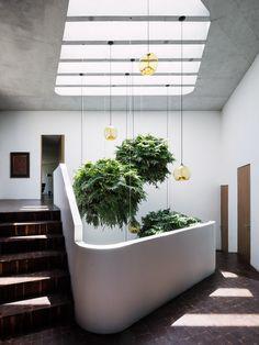 "Tatiana Bilbao's Ventura House ""grows organically"" across a forested hillside"