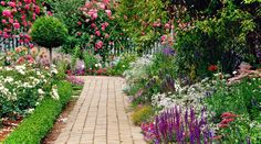 Tips for a Perfect English Garden | The Flowers Avenue