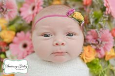 Newborn Baby   Brittany Gidley Photography LLC