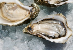 Oysters a popular food in Spain