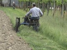 Lawn Mower, Agriculture, Binder, Tractors, Backyard, Hoe, Homestead, Youtube, David