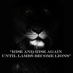 "Rise and rise again until lambs become lions. Quote from the movie ""Robin Hood"""