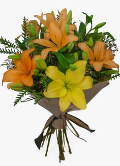 Gauteng Flower & Gift Delivery for all occasions. Whether you are looking for luxury or budget, our flower shops have what you are looking for. Gift Delivery, Lily, Flowers, Plants, Gifts, Presents, Orchids, Plant, Favors