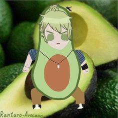 Rantaro-Avocado
