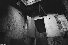 David Lynch - Photography