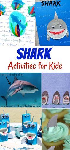 Awesome Shark Activities, Shark Books, Shark crafts, Shark Party Ideas, Ocean sensory play and more. Shark Week activities, Sharks Free Printables