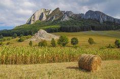 Munții Trascăului sunt o grupă montană a Munților Apuseni, aparținând lanțului muntos al Carpaților Occidentali. Cel mai înalt vârf este Dâmbău (1.369 m). Munții sunt dispuși între Valea Ampoiului ...