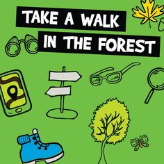 Learn about the York Regional Forest! Find maps of the forest tracts and information about accessible trails.