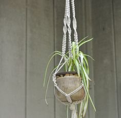How to hang macrame plant hanger from ceiling with cut four pieces of hemp twice as long as you want each branch. Cut four more pieces of the cord about six times longer than the other pieces. Crochet Plant Hanger, Macrame Plant Holder, Macrame Plant Hangers, Macrame Supplies, Macrame Projects, Hang Plants From Ceiling, Macrame Square Knot, Making Friendship Bracelets, Free Macrame Patterns