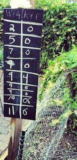 Homemade bocce ball scoreboard :)