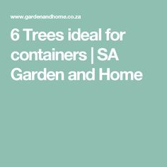 6 Trees ideal for containers | SA Garden and Home
