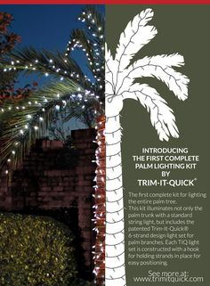Palm tree lighting kits! Buy direct: http://shop.trimitquick.com/