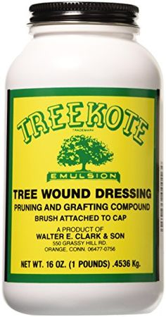 Clarks 00016 Treekote Brushtop Container, 16-Ounce ** Additional details at the pin image, click it  : Gardening DIY