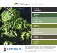 I found these colors with ColorSnap® Visualizer for iPhone by Sherwin-Williams: Tricorn Black (SW 6258), Arugula (SW 6446), Lounge Green (SW 6444), Paradise (SW 6720), Recycled Glass (SW 7747), Muddled Basil (SW 7745), Gecko (SW 6719).