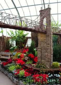 Krohn Conservatory trains at Christmas, Roebling Bridge
