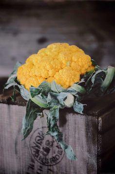 #food #dslr #vscoedit #foodphotography #foodstyling #sf #bayarea #abrowntable #niksharma
