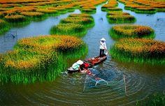 Avec le littoral plus de 3000 km, les villes trépidantes, les vestiges historiques héroïques, la culture originale, attrayante, la cuisine riche, variée,… le #voyage au #Vietnam est de plus en plus connu. La Baie #d'Halong, Sapa, Phu Quoc, Nha Trang,… sont toujours classés parmi les merveilles du monde.